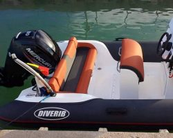 DiveRib-499-6