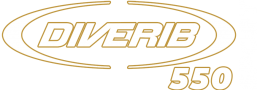 Diverib 550 Sport Title White